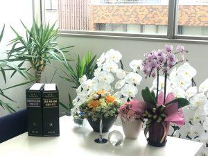 事務所お祝い花